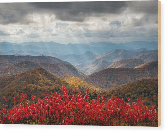 Blue Ridge Parkway Fall Foliage - The Light Wood Print