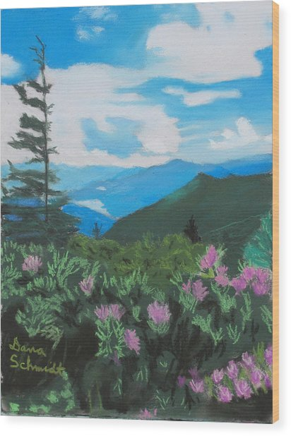 Blue Ridge Parkway In June Wood Print