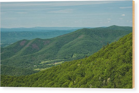 Blue Ridge Vista Wood Print