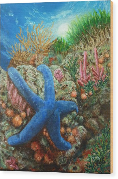 Blue Seastar Wood Print