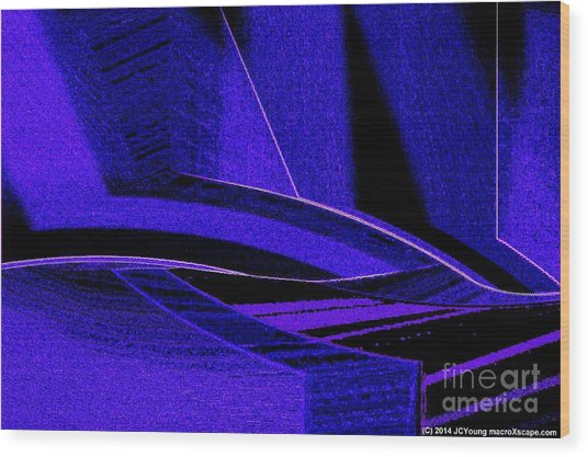 Deep Blue Sharks Wood Print by JCYoung MacroXscape