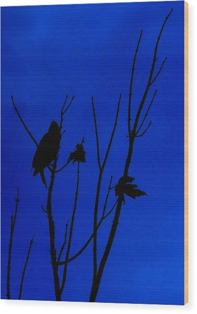 Blue Silhouette Wood Print by Julie Cameron