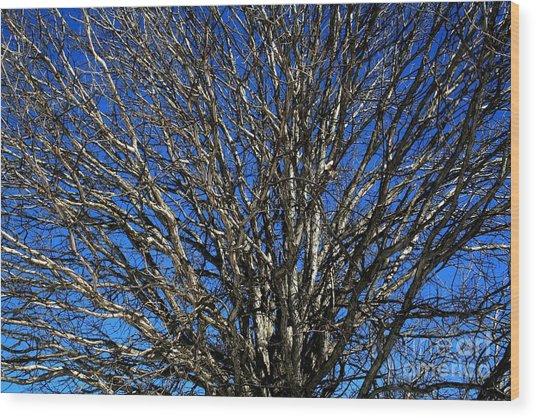Blue Sky Wood Print