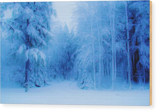 Blue Snowy Night Wood Print