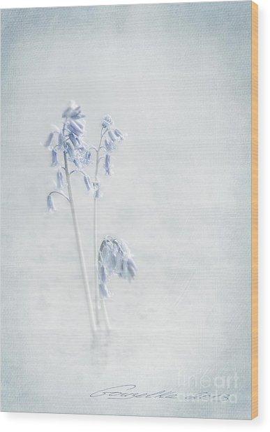 Blue Softness Wood Print