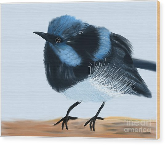 Blue Wren Beauty Wood Print