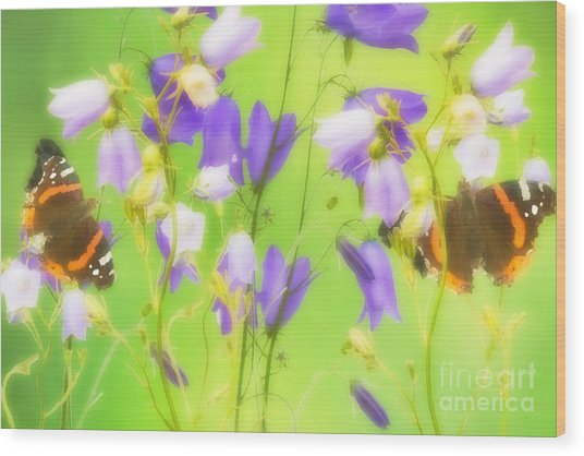 Bluebells And Butterflies Wood Print