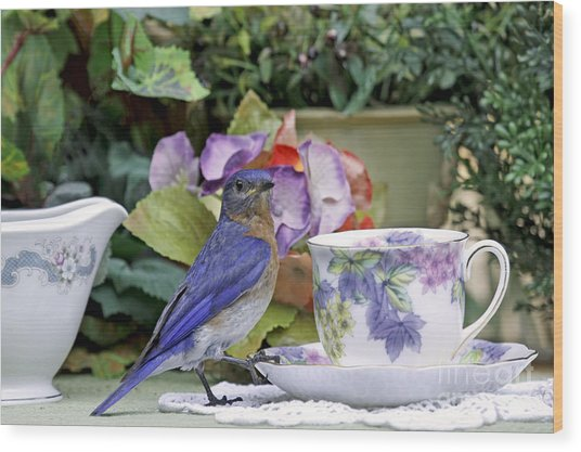 Bluebird And Tea Cups Wood Print