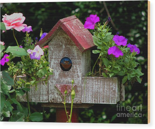 Bluebird House Wood Print