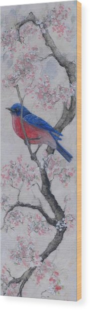 Bluebird In Cherry Blossoms Wood Print by Sandy Clift