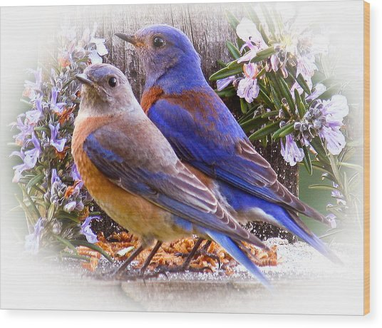 Bluebird Wedding Wood Print
