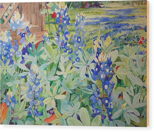 Bluebonnet Beauties Wood Print