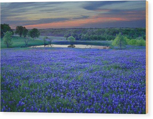Bluebonnet Lake Vista Texas Sunset - Wildflowers Landscape Flowers Pond Wood Print