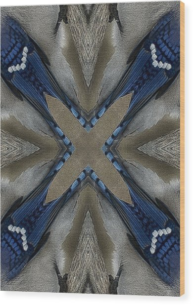 Bluejay Feathers Wood Print