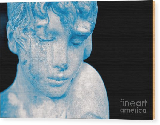 Blush Blue Wood Print