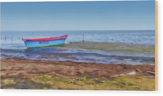 Boat At The Pond Wood Print