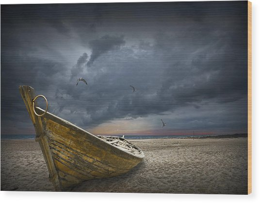 Boat With Gulls On The Beach With Oncoming Storm Wood Print