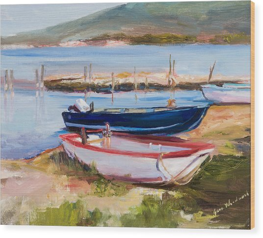 Boats At Lake Tresimeno Wood Print by Jane Woodward
