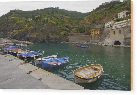 Boats In Vernazza Wood Print