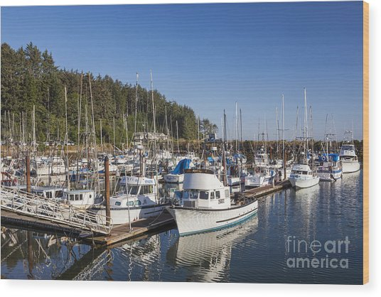 Boats Moored At Charleston Marina Wood Print