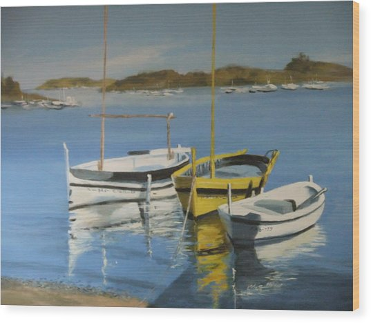 boats of Cadaques Wood Print by Clive Holden