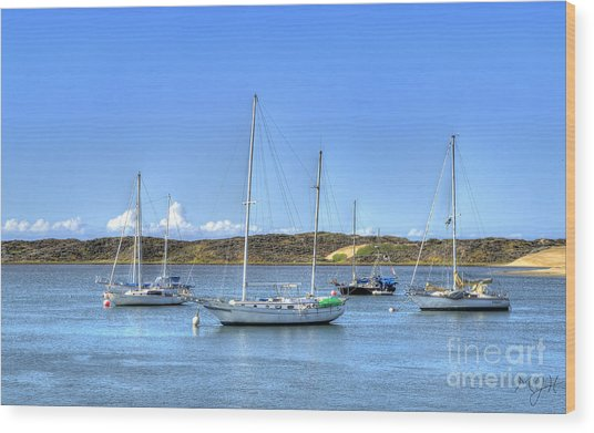 Boats On The Bay Wood Print
