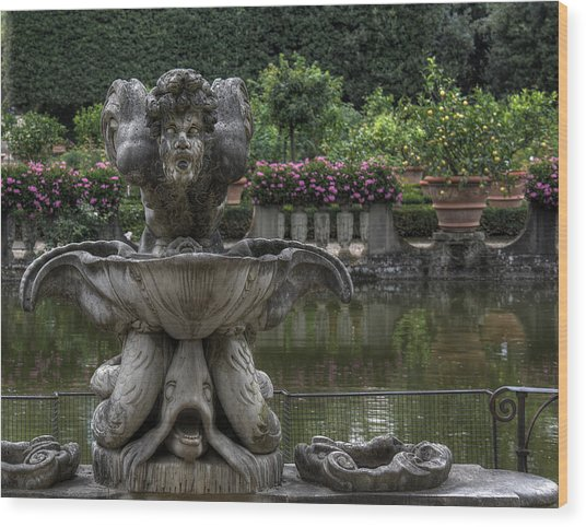 Boboli Fountain Wood Print