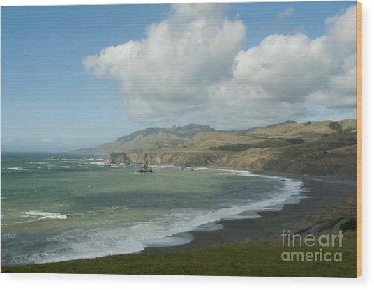 Bodega Bay California Wood Print