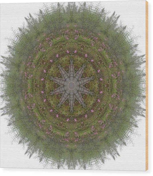 Bog And Rhodora Wood Print