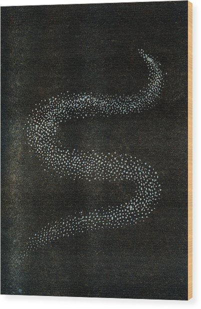 Bolide Forming A Serpentine Shape Due Wood Print
