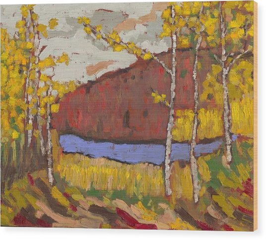 Bon Echo Gold Wood Print