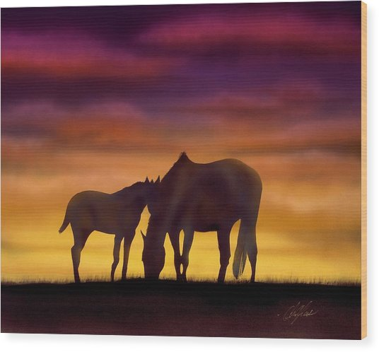 Bonding At Dusk - 2 Wood Print