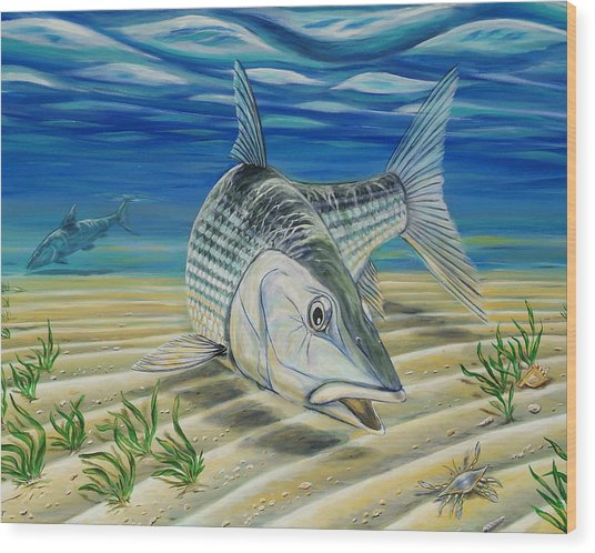 Bonefish On The Flats Wood Print