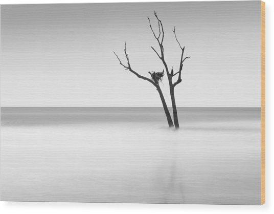 Boneyard Beach - II Wood Print