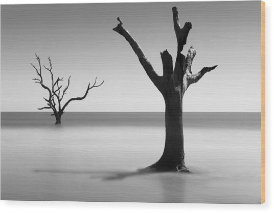 Boneyard Beach - IIi Wood Print