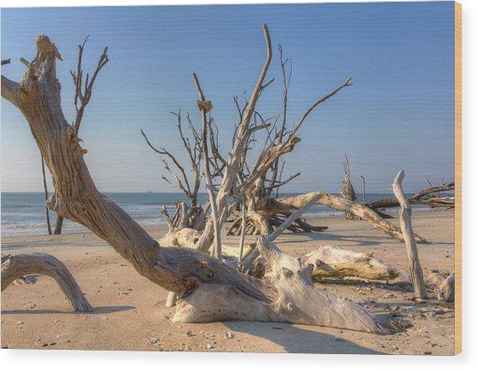 Boneyard Beach Wood Print