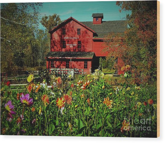 Bonneyville Grist Mill From Dahlia Garden Wood Print by Rory Cubel