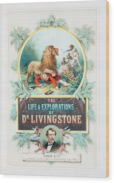 Book About David Livingstone Wood Print
