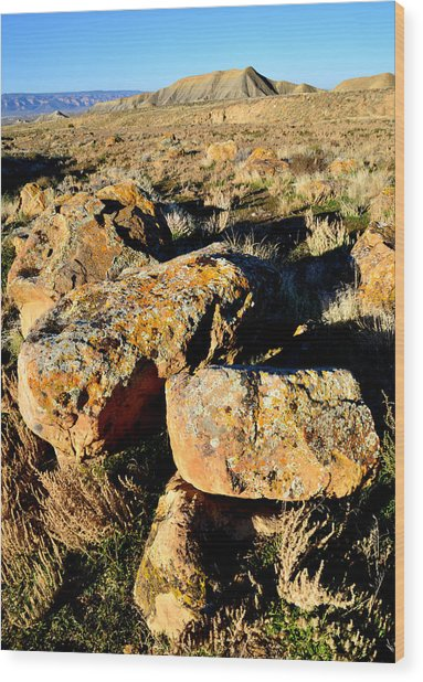 Bookcliffs 138 Wood Print by Ray Mathis