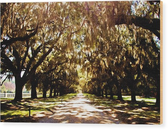 Boone Plantation Wood Print