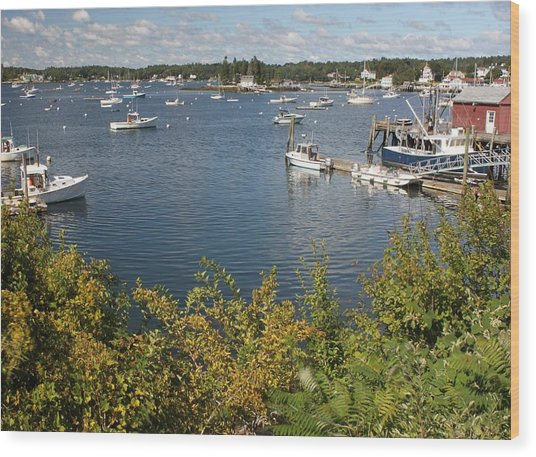 Boothbay Harbor Vista Wood Print
