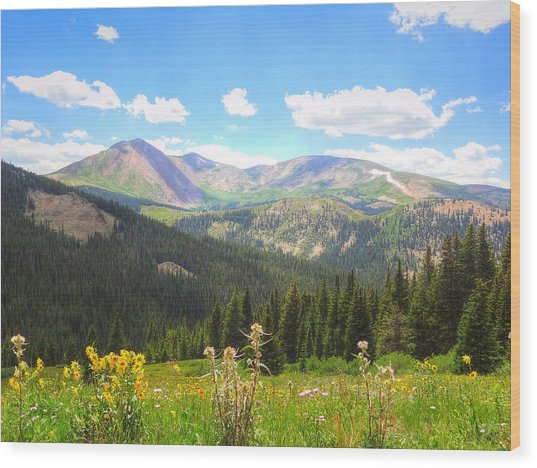 Boreas Pass Summer Wood Print