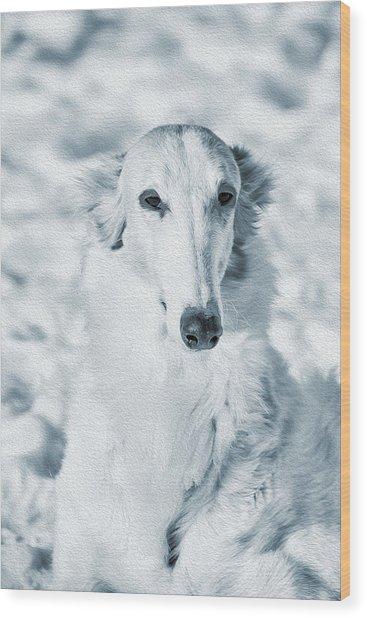Borzoi Russian Hound Portrait Wood Print