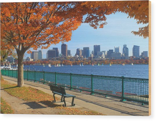 Boston Charles River In Autumn Wood Print