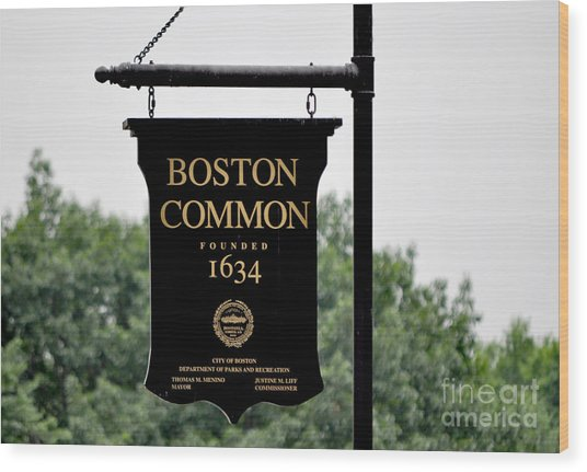 Boston Common Ma Wood Print