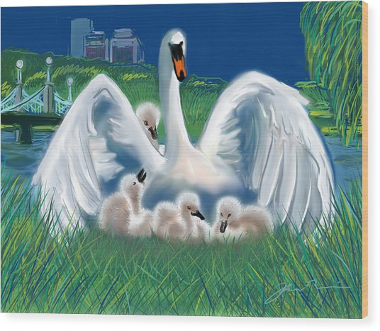 Boston Public Garden Swan Family Wood Print