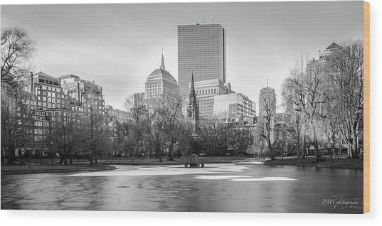 Boston Sky From Public Garden Wood Print