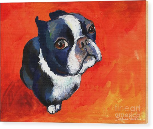 Boston Terrier Dog Painting Prints Wood Print