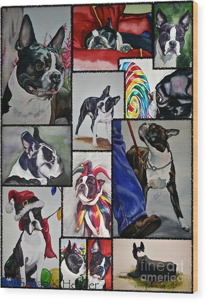 Boston Terrier Watercolor Collage Wood Print