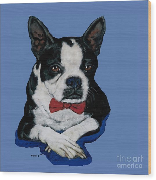 Boston Terrier With A Bowtie Wood Print